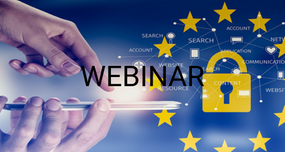 Immagine webinar privacy